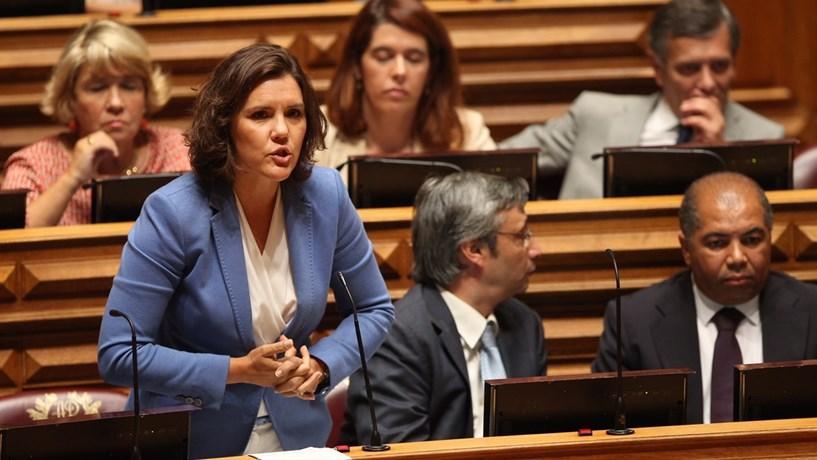 Parlamento vai pedir acesso ao relatório de Xavier Viegas na íntegra